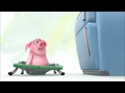 Das Schwein will die Kekse