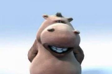 Hippo und Dog