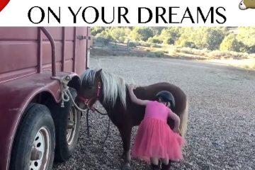 Kleines Mädchen gibt nicht auf